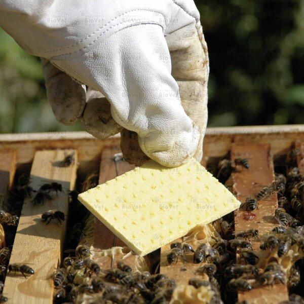 Thymovar Streifen zur Varroa Sommerbehandlung